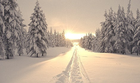 Snow Sunset, Vancouver, Canada