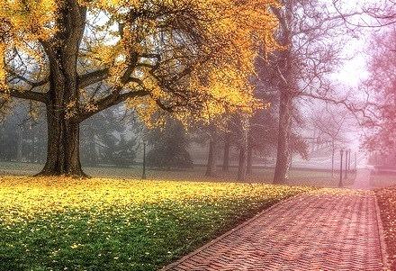 Autumn, Charlottesville, Virginia