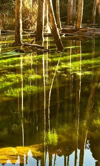Reflections on the clear waters of Nantou County, Taiwan