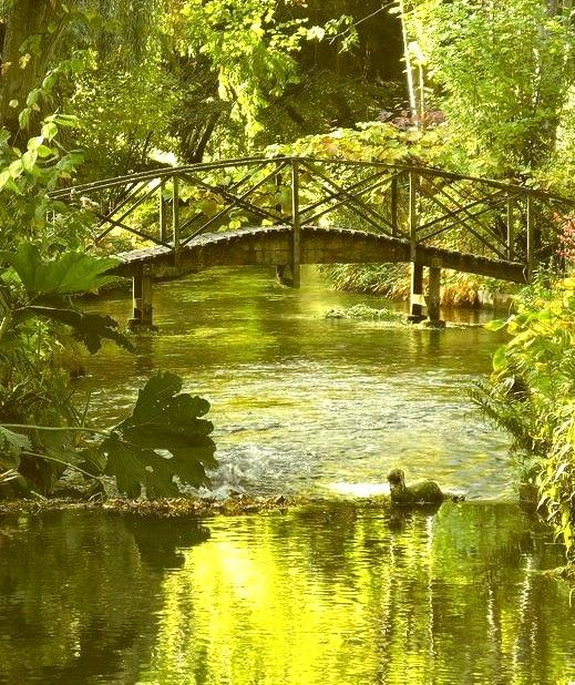 River Itchen at Ovington, Hampshire, England