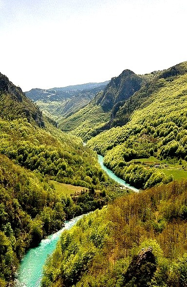 The canyon of Tara River in Montenegro