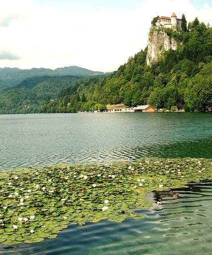 The medieval castle overlooking Lake Bled / Slovenia