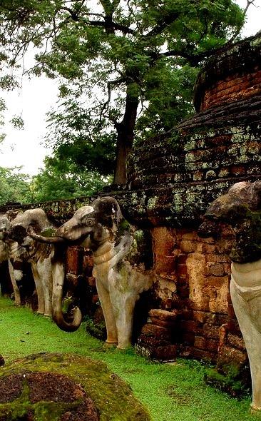 Elephants around chedi at Kamphaeng Phet Historical Park / Thailand